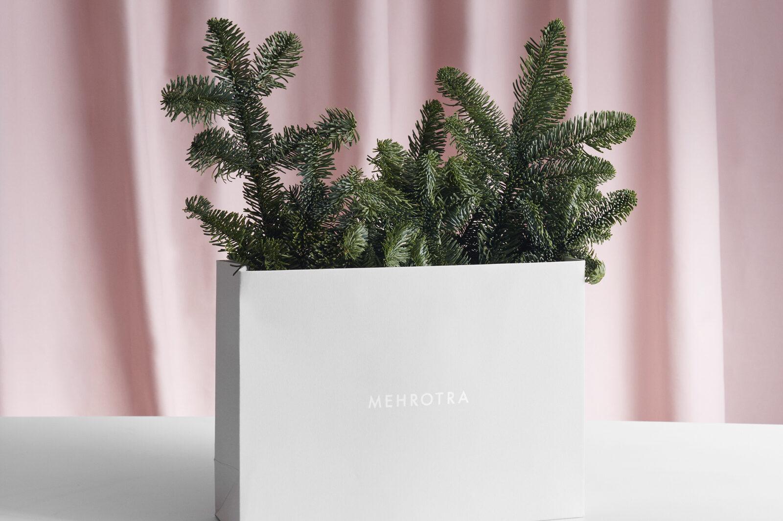 mehrotra-inspiration-image